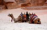 The Camel Boy