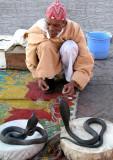Snake Charmer I