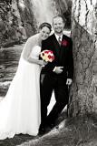 Tracy and Jennifer's Wedding