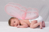 Annabelle's Pictures