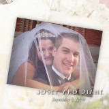 Josef and Diane's Wedding Album