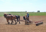 Amish_1
