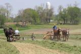 Amish_10