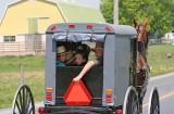 Amish_12