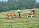 Amish_15