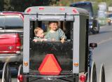 Amish Children Buggy