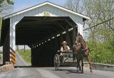 Amish Covered Bridge