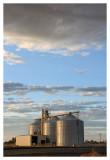 Agriculture on the Salton Sea