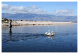The Salton Sea Adventures