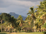 Fiji for golfers - 1