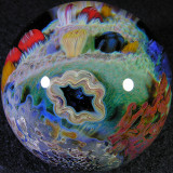 Clamshell Reef Size: 1.91 Price: SOLD