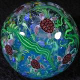 Sea Turtles and Tropical Fish
