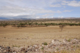Maasai village we visisted