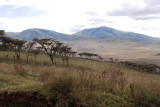Scenery of highland of Ngorongoro
