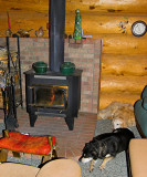 Fire place, doggies