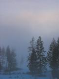 Fog631.jpg