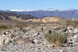 Death Valley I _02172009-001.jpg