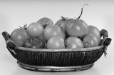 tomato basket.jpg