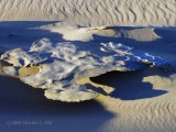 Dune Wafers