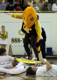 """Georgia Tech mascot Buzz does some """"court surfing"""""""