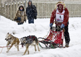 Rondy Sled Dog Race