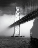 The Big Foggy