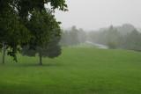 Wet Virginia landscape