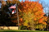 Autumn colors with Nikon D7000