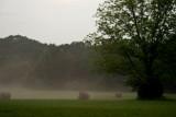 Mist after storm