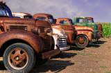 Many Old Trucks