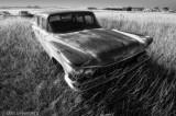 1959 Buick Wagon