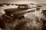 1956 Buick Special in Sepia
