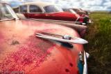1956 Packard Clipper in Pink