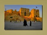 Aleppo - Syria -