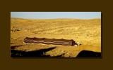 On the road to Petra -Jordan -