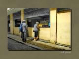 _DSC1578_f.jpg
