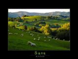 Sare - France