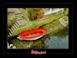 _DSC4225_f.jpg