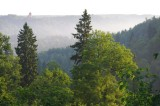 Gauja valley in Sigulda