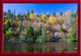 74219 Autumn Colors.jpg