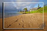 hawaii_fall2010