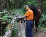 Helping with wood cutting