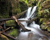 Whiskey Creek           IMG_3315a.jpg