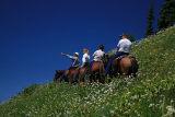 On the hill  (Tatoosh Ridge)