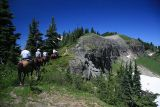 And up the hill  (Tatoosh Ridge)