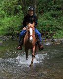 Crossing the river  (Onalaska)