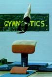 2008 VT State Gymnastics