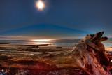 Log on Crescent Beach