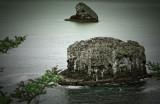 Sea stacks (2), Cape Meares State Park, Oregon Coast