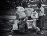 Homeless in Honolulu